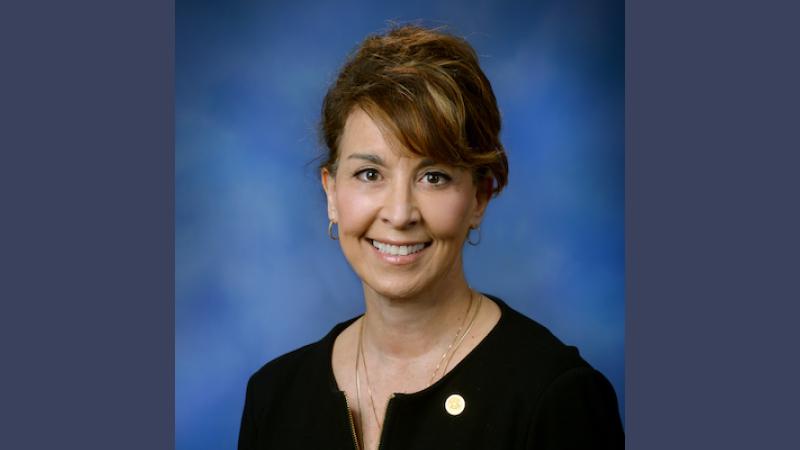 Rep Lynn Afendoulis