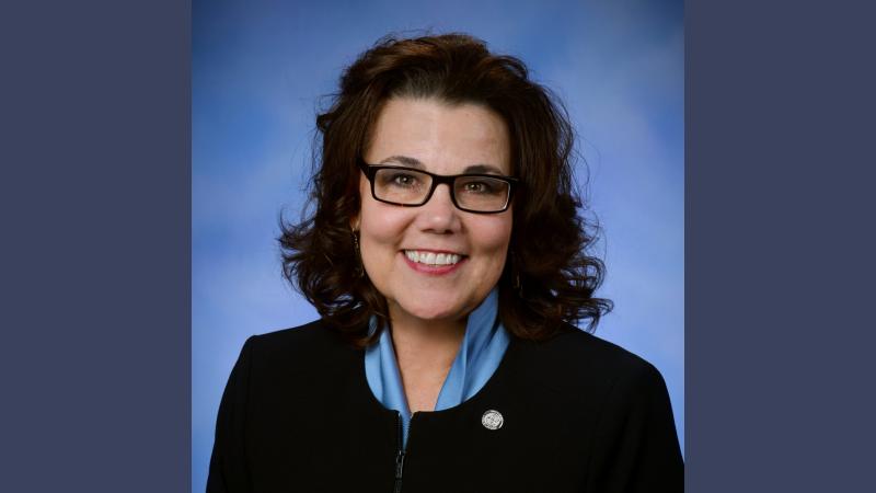 Rep Ann Bollin
